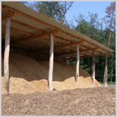 Wood Chip storage in forest
